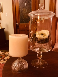 Terrarium from a vase, pedestal candle holder, and candy dish lid